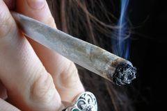 Курение марихуаны крайне вредно для здоровья