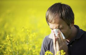 Аллергический ринит: виды, симптомы и лечение