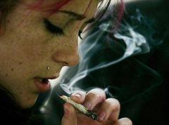 Исследование доказывает, марихуана может вызвать паранойю