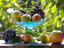 Названы фрукты которые полезны для  психики