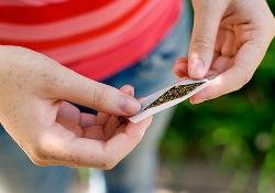 Юные любители «травы» наносят своему здоровью наибольший ущерб