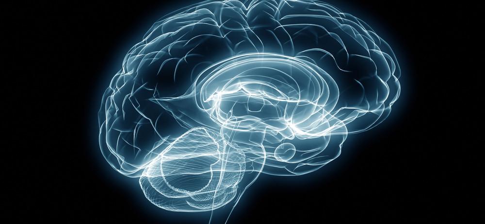 Определены участки мозга отвечающие за веру в приведения