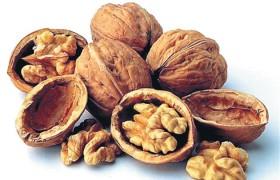 Орехи смогут защитить от стресса