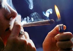 Курение марихуаны может повредить здоровью легких