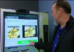 Первый автомат по продаже соцветий марихуаны откроется в Сиэтле