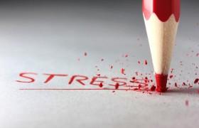 Стресс может стать причиной ожирения