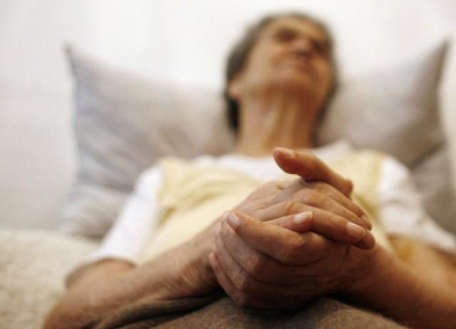 Работа иммунитета влияет на развитие болезни Альцгеймера