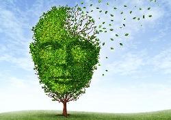 Препараты от эпилепсии смогут помочь при деменции