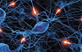 Витамины помогут укрепить нервную систему