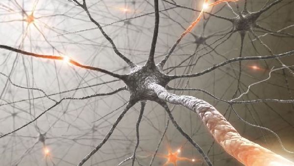 Ученые смогли вылечить боковой амиотрофический склероз