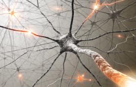 Ученые восстановили «доброе имя» кладрибина, который мог стать эффективным средством лечения рассеянного склероза