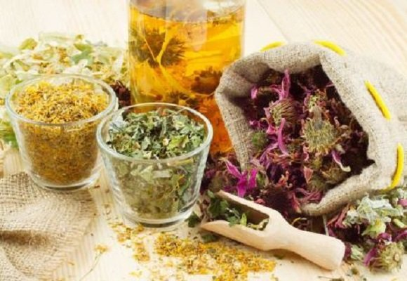 Травяные сборы для лечения стресса
