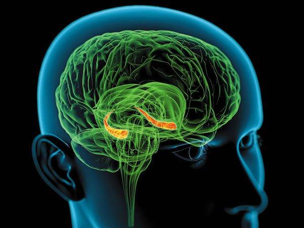 Синтетический эстроген защитит женщин от шизофрении