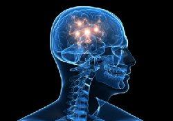 Болезнь Паркинсона будут лечить пересадкой стволовых клеток