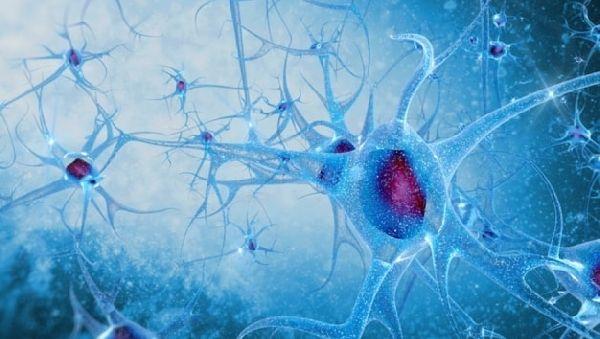 Ученые определили гены, вызывающие шизофрению