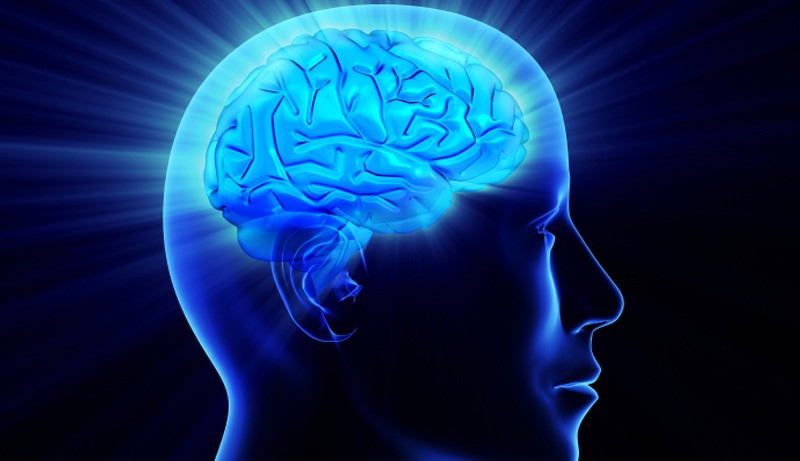 Генетика: появление интеллекта и психических заболеваний