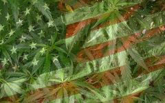 Пенсильвания разрешила использовать марихуану в медицинских целях