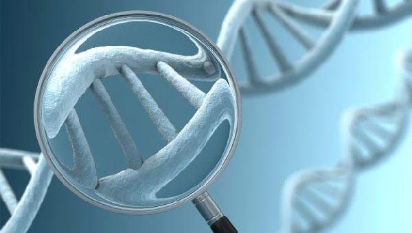 Обнаружены мутации в генах, которые увеличивают риск развития шизофрении