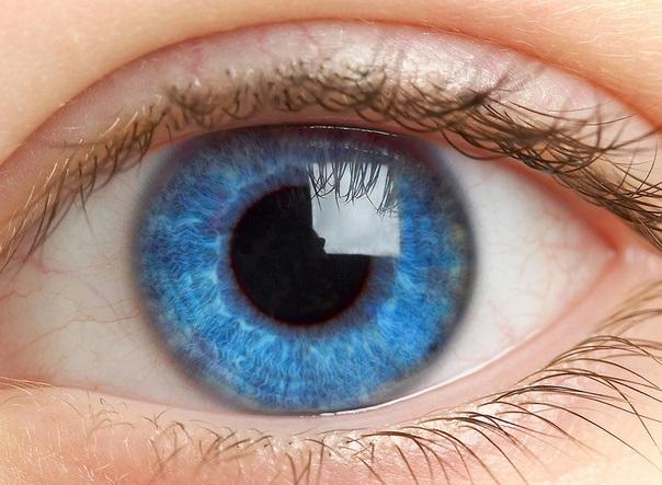Цвет глаз поможет выявить склонность к алкоголизму