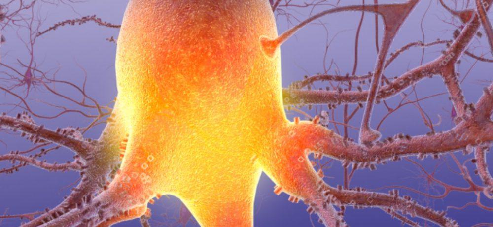 Ученые обнаружили взаимосвязь болезни Альцгеймера и анемии