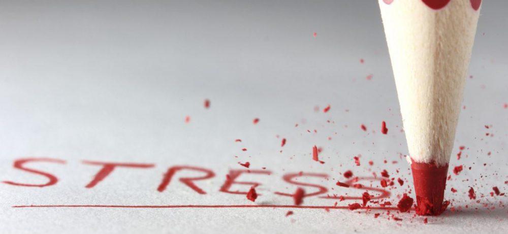 Стресс положительно влияет на работу мозга