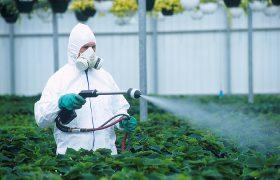 Пестициды ухудшают состояние нервной системы