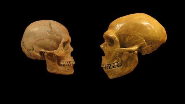 Эволюция могла стать причиной возникновения шизофрении