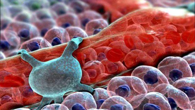 Ученые обнаружили вирус, с помощью которого можно лечить нейродегенративные заболевания