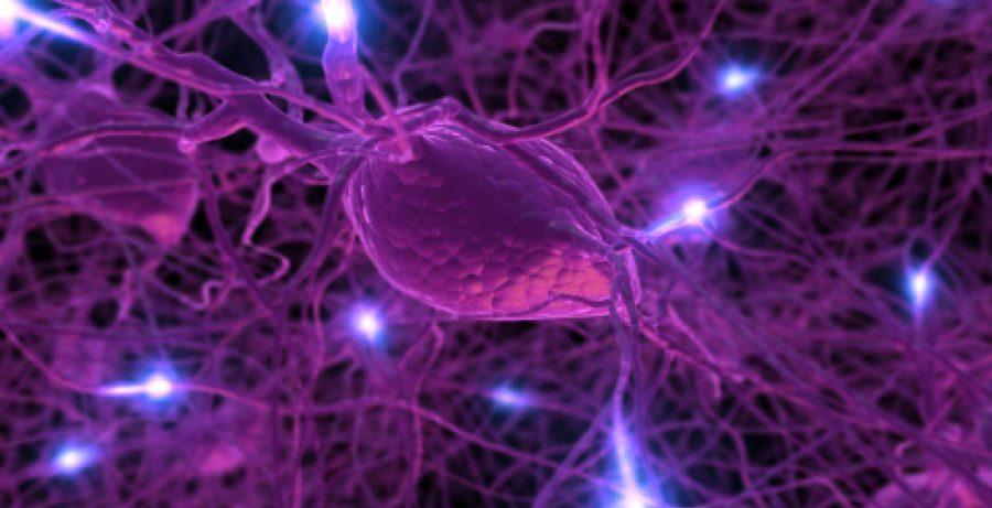 Диабет 2 типа приводит к потере ткани мозга
