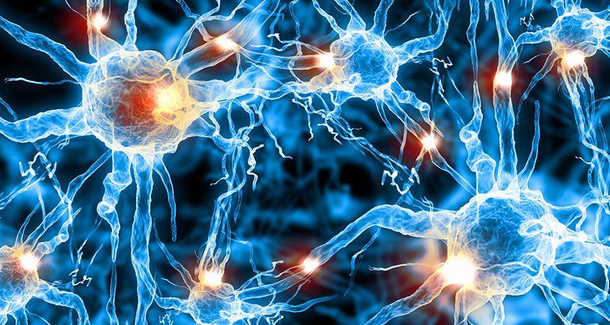 Ученые сумеют восстановить поврежденные нервы