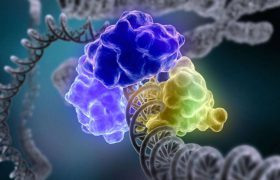 Шизофренические белки обнаружились за пределами мозга