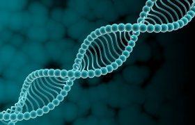 Найден генетический вариант, связанный с шизофренией