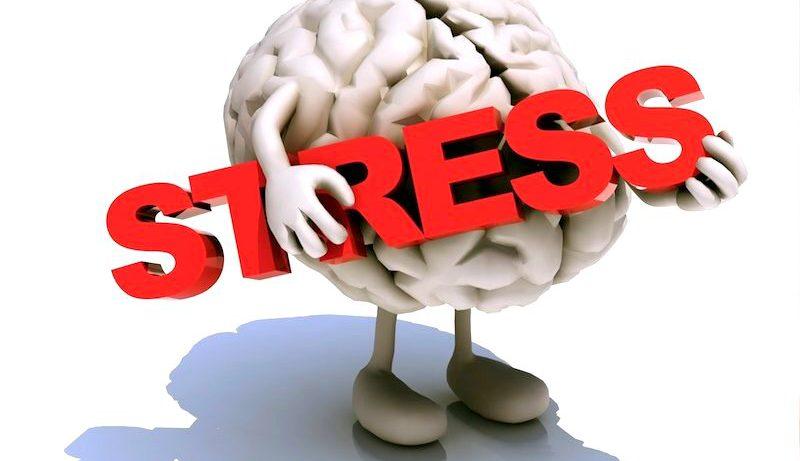Легкий массаж ушей поможет справиться со стрессом