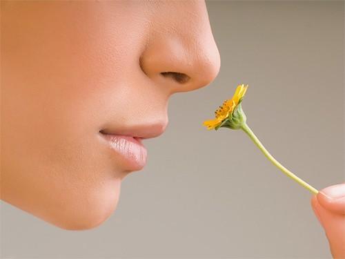 Болезнь Альцгеймера диагностируют по способности различать запахи