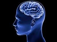 Голодание полезно для мозга, показало исследование
