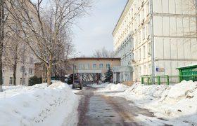 Кекелидзе хочет вернуть трудотерапию для психбольных
