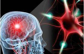 Ученые выяснили, как рассеянный склероз повреждает память