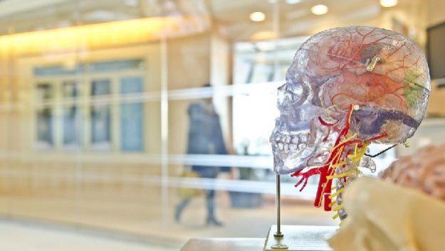 Никотин поможет излечить шизофрению