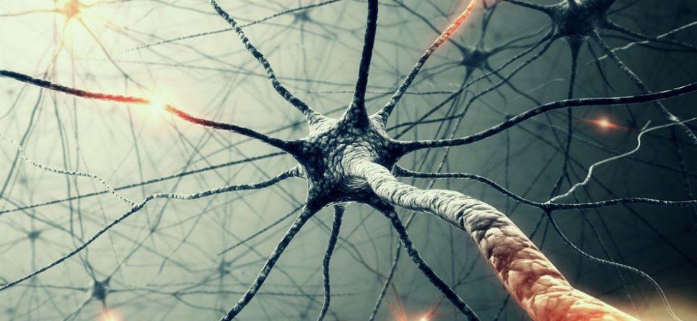 Рассеянный склероз удастся обуздать, уверены российские исследователи