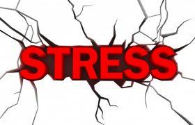 Стрессовая работа повышает риск возникновения рака груди