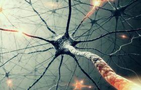 Ученые установили молекулярную особенность рассеянного склероза