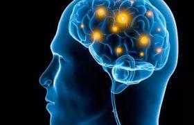 Анализ крови на болезнь Паркинсона