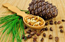 Как выбрать ядра кедрового ореха