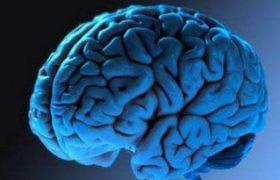 Причины инфаркта головного мозга. Симптомы и методы лечения заболевания