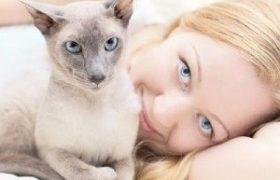 Домашние любимцы могут лечить шизофрению