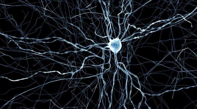 Препараты химиотерапии нарушают функцию нервных клеток