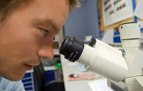 Физики изучают фермент, связанный с болезнью Альцгеймера и раком
