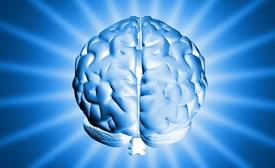 Найден способ повысить »быстродействие» мозга