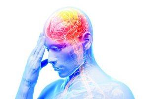 Магний может остановить старение мозга