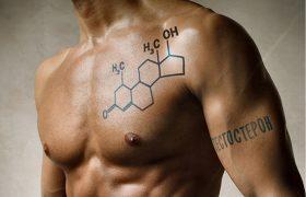 Эмоциональная привязанность снижает уровень тестостерона